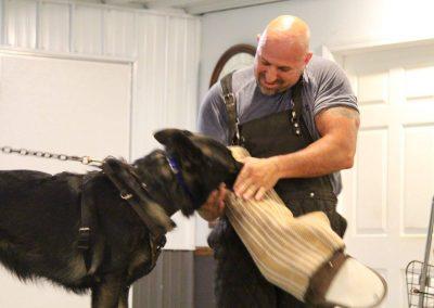 Unleashd Canine Academy - Mark Boggs